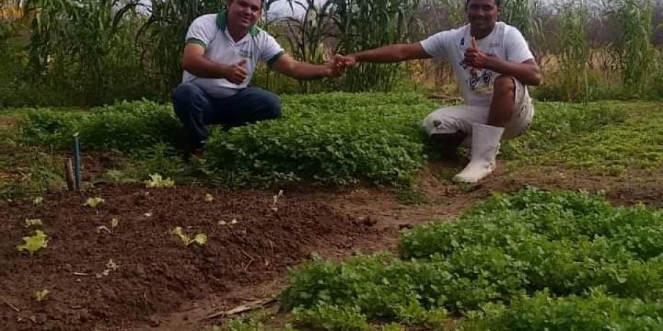 SECRETARIA DE AGRICULTURA E PESCA JUNTOS COM OS PARCEIROS FOMENTA A GERAÇÃO DE RENDA E ESTIMULAR AGRICULTURA FAMILIAR EM PARAU